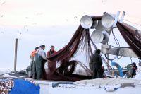 Διαβάστε περισσότερα: Εργάτες αλιευτικού στην Καλαμαριά