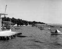 Μπροστά στον Χαμόδρακα το 1958
